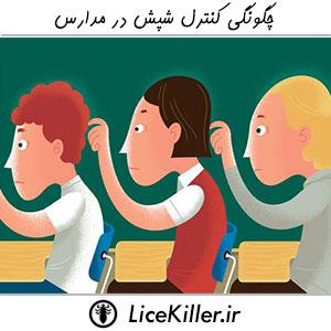 چگونگی کنترل شپش در مدارس